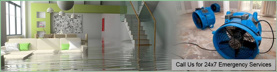 Water Damage Restoration Manhattan Beach